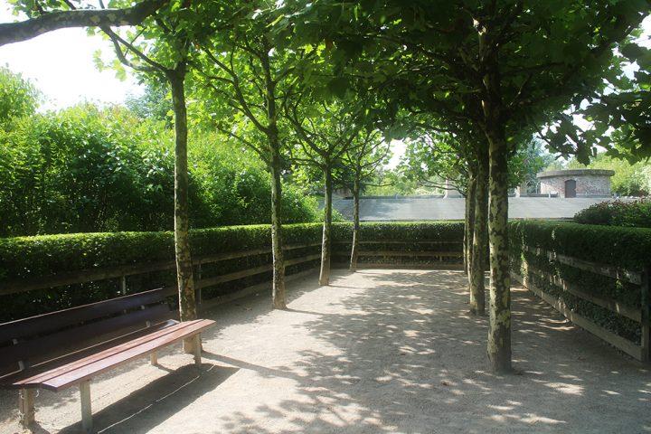 Rosengarten im Fort X. Eine kurze Allee aus blühenden Bäumen, mit einer Bank auf der linken Seite. Foto für das Paket Stadttour mit Heiratsantrag.